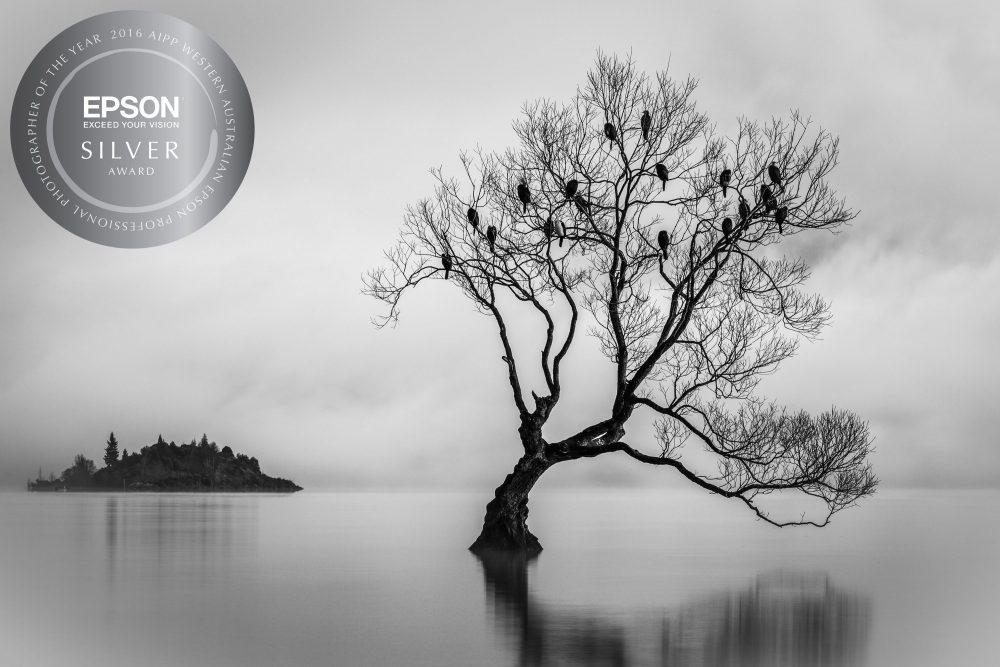 Silver-Landscape 2016 WAEPPA
