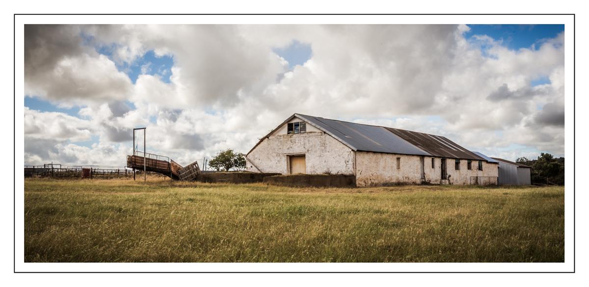 Old shearing shed near Northampton, WA
