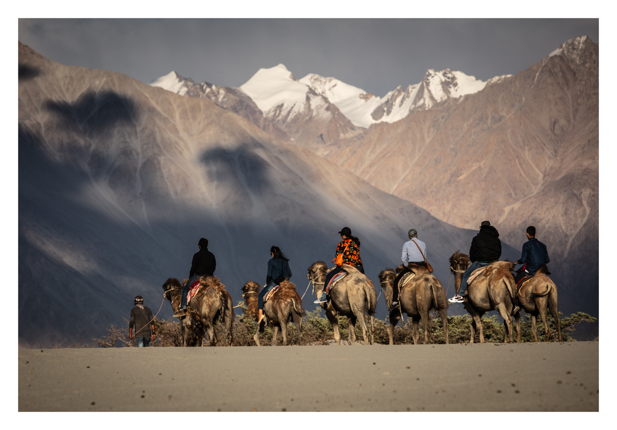 Blog photo of tourists riding on the camels of Nubra Valley Ladakh