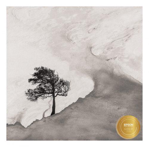 WAEPPA Gold awarded photo in Illustrative Category