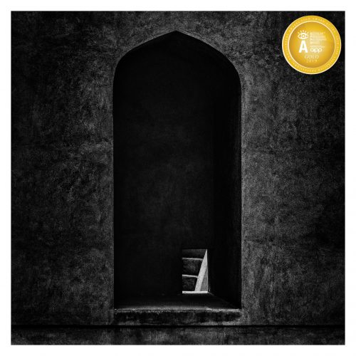 AIPP Gold awarded image